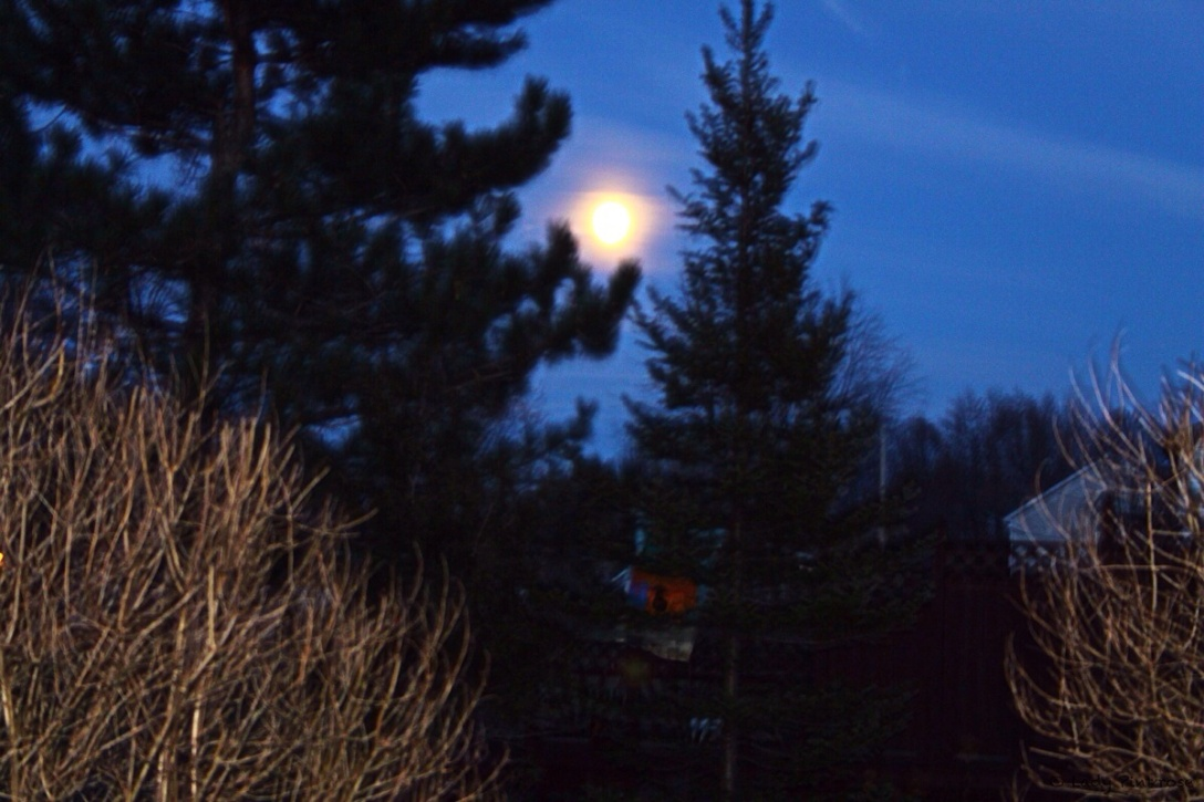 Full Moon November 16, 2013, approx. 5:30pm EST.