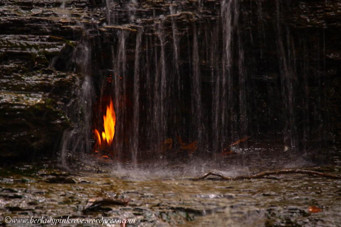 LR Eternal Flame--3
