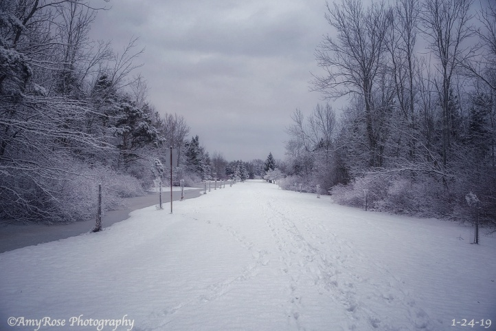 All those boot prints in the snow are mine as I was taking pictures ...