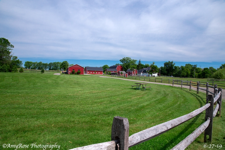 Wide angle view of all the barns.