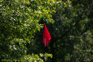 Composition and the unique placement of this red flag
